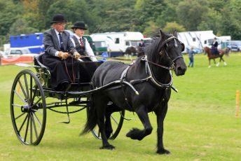Wolsingham Agricultural Show